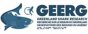 Greenland Shark Research (GEERG) Logo