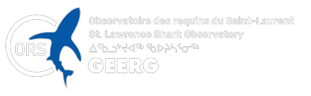 St. Lawrence Shark Observatory (ORS | GEERG) Logo