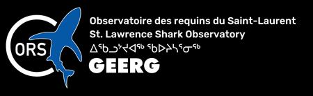 Observatoire des requins du Saint-Laurent (ORS | GEERG)